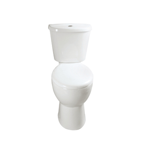 Wash Down Toilet --SD306H