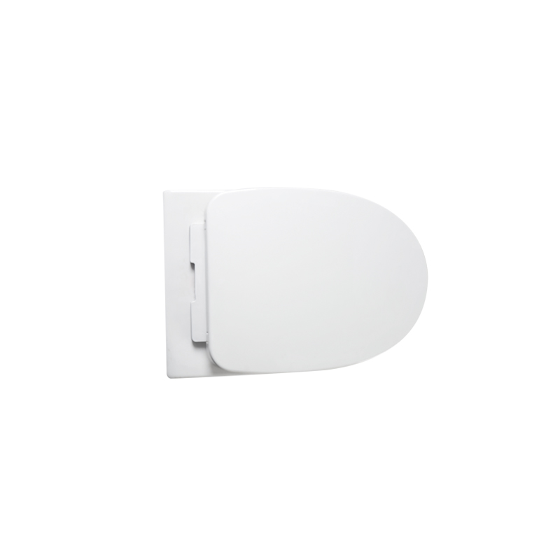 Back To Wall Toilet--CB8803