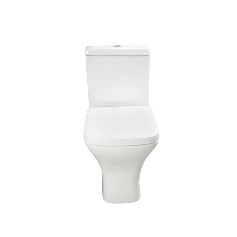 Wash Down Toilet --SD301