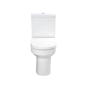 Wash Down Toilet --SD601